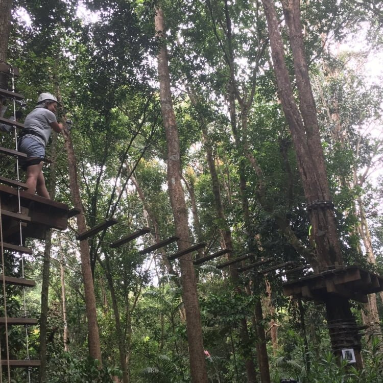 Club Med Cherating Review - Tree Top Adventure